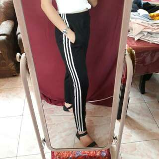 Track Pants (Best Seller)
