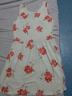 Dresses Used Take All