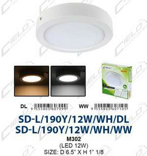 LED Surface downlight 12W