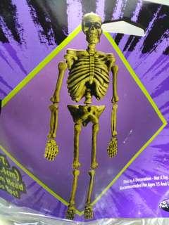 Skeleton 骷髏骨頭,人體骨骼,5ft,Halloween, 萬聖節