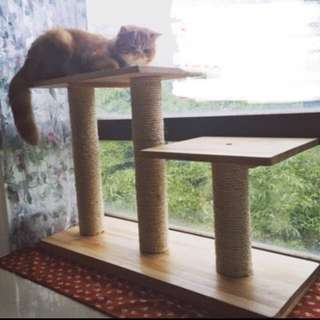 (NEW!) Pinewood scratch post bed pole house