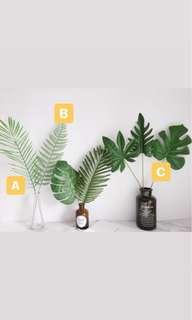 Palm Leaves (Rental)