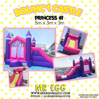 Awesome Princess bouncy castle