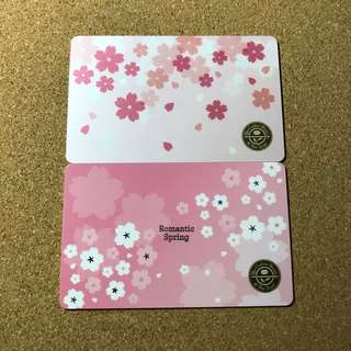 Korea Coffee Bean Sakura Cherry Blossom Card