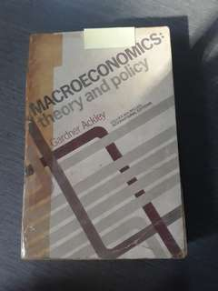 Macroeconomics: theory and policy