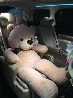 New Huge Teddy Bear