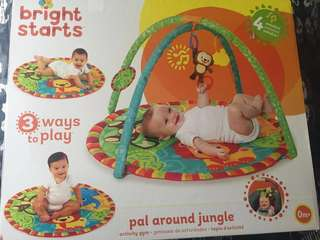 Brand New Baby Play Gym