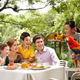 Jurong Bird Park Lunch With Parrots **ADD ON**