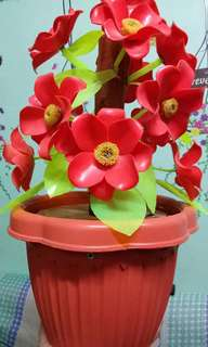 Flower Display - Alkansya in 1