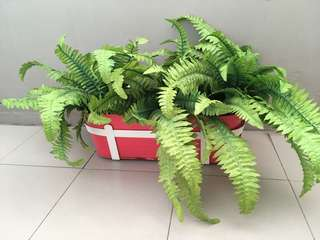 IKEA plant pot with fake grass