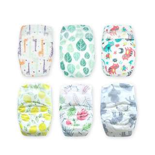 Offspring Fashion Diapers Trial Pack