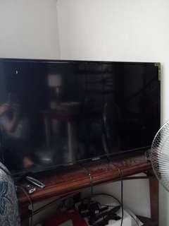 Fukuda tv