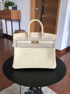 Hermes Birkin25 Alligator Matt Ghw Y1
