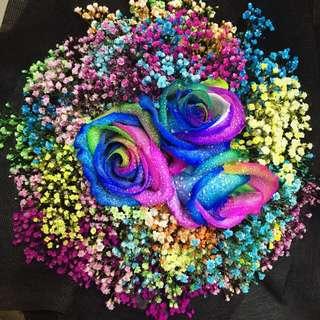 Huamama Rainbow