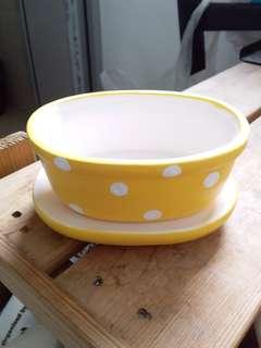 Ceramic Bonsai Pot