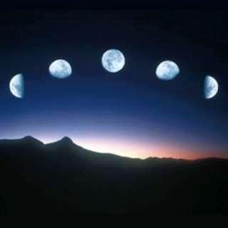 占星諮詢 - 個人年度星座諮詢