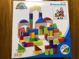Wonderworld 75 pieces block