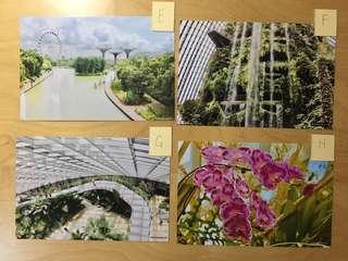 Postcards (New designs every week)