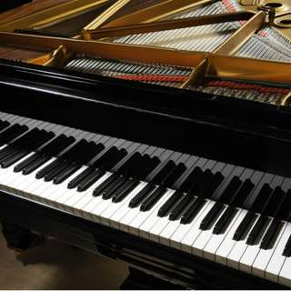 Piano Accompanist, Pianist for events, Piano lessons (Theory and Practical) Available!!