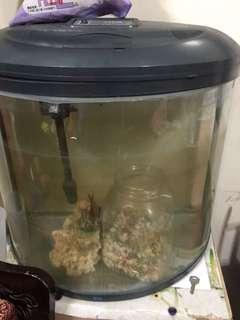 🚚 魚缸~中型