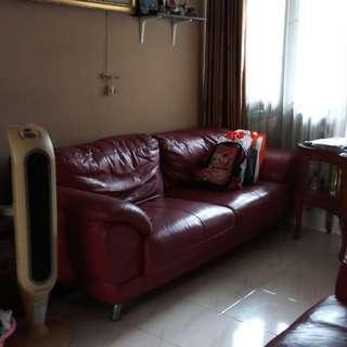 Sofa kulit