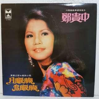 郑贵中 - 月朦胧鸟朦胧 Vinyl Record