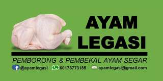 Pembekal Ayam Daging Segar