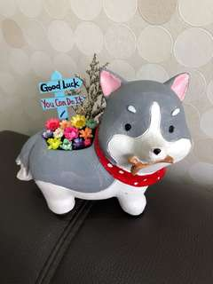 🌈SALE! Real Preserved Frozen Flowers in a Grey Dog Puppy Plant Clay Pot Good Luck You Can Do It