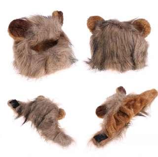 Small Pet costume