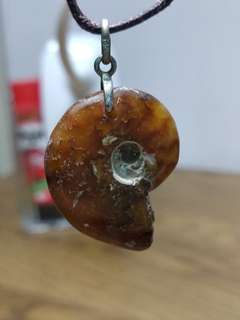 天然 斑螺 化石 吊咀 4.4g (包郵)