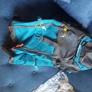 Genuine Mint Decathlon Forlaz 60 Backpack