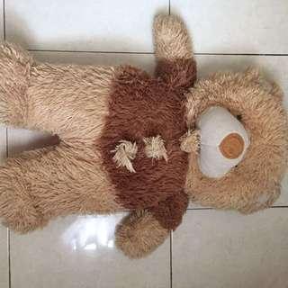 BONEKA TEDDY BEAR / Teddy Bear Doll