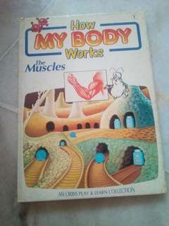 Children's Book - How my Body Works