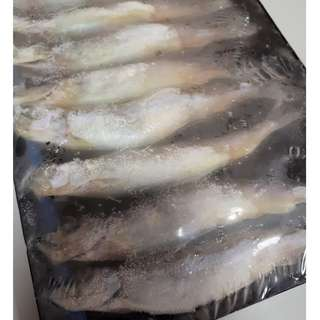 Kingfisher Shisamo Fish 170 gm per pack (8 pcs)
