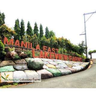 216sqm Vacation/Residential Lot *Manila East Lakeview Farms Morong Rizal