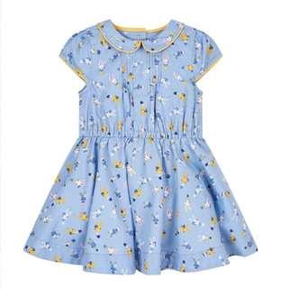 Blue bunny dress