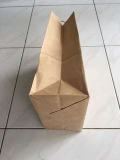 Brown paper bag ( no brand )