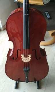Student Beginner Cello