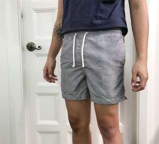 H&M Swim Shorts (Gray)
