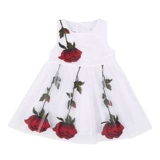 Flower Embroidery Baby Girl Dress