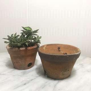 Antique terracotta pot 10.5cm