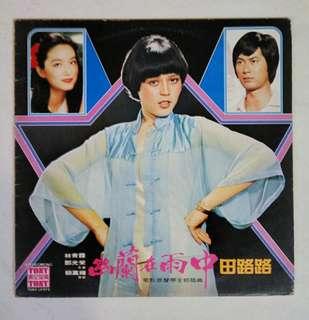 田露露黑胶唱片 vinyl record