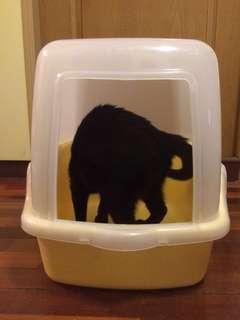 有蓋貓砂盆