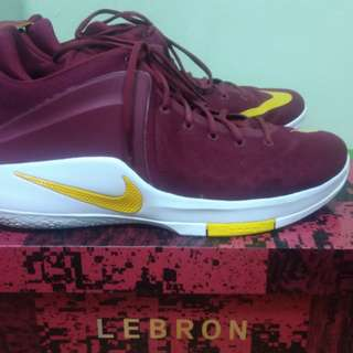 Nike Lebron Zooom Witness Size14