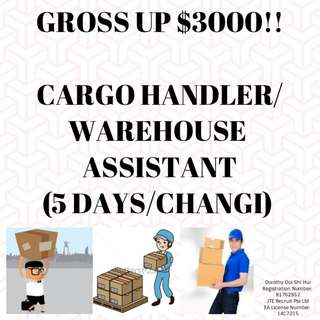 Cargo Handler / Warehouse Assistant* 10