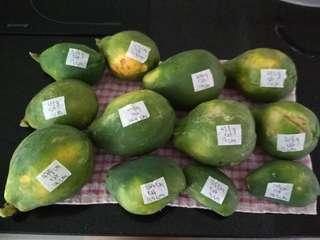 Papaya $1-$2 each Hawaiian