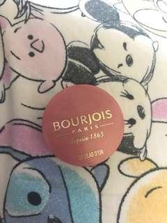 Bourjois paris blusher