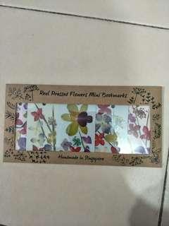 Real pressed flowers  mini bookmark