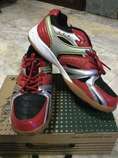 Accel badminton shoes / volleyball