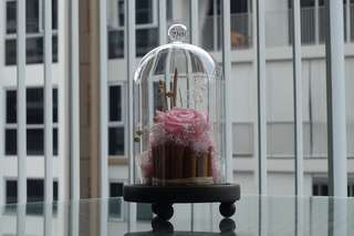 SALE - Premium Preserved Roses in Glass Dome